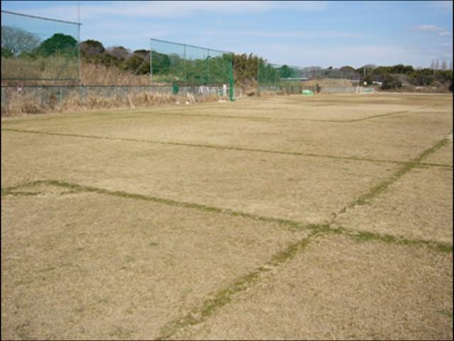 大塚グラウンド 2月の写真1